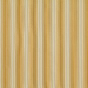 Stripes in Maize