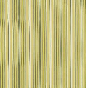 Fine Stripe in Willow