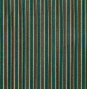 Shirt Stripe in Green