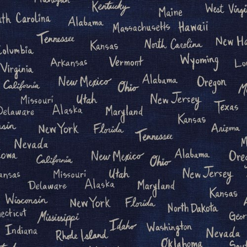 All the States Canvas in Navy