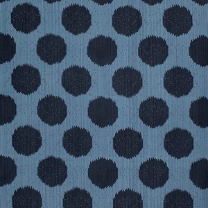 Static Dot in Indigo