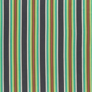 Tick Tock Stripe in Mint