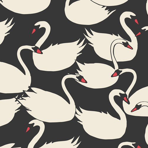 Hello, Ollie Swanlings Bevy in Nightfall CANVAS