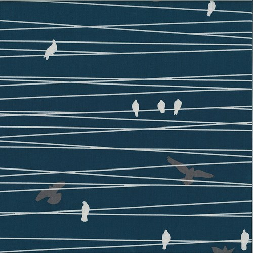 Birds on a Wire in Navy