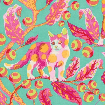 Disco Kitty in Strawberry Fields