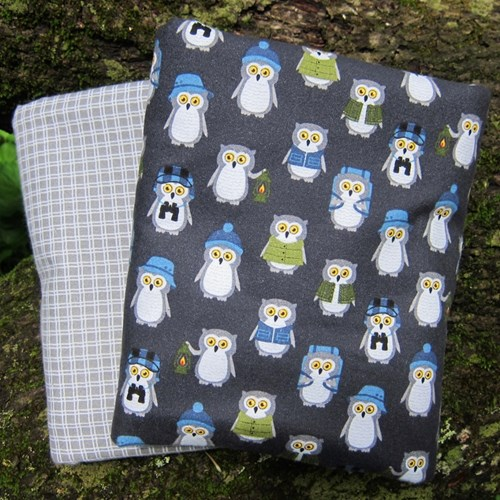 Whole Cloth Quilt Kit - Campsite Critters Night Owls Flannel