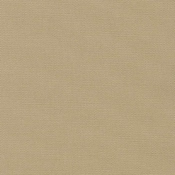 Big Sur CANVAS - Light Beige