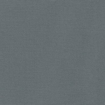 Big Sur CANVAS - Gray