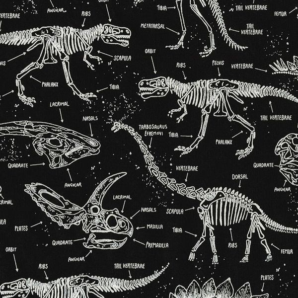 Dinosaur Skeletons in Black